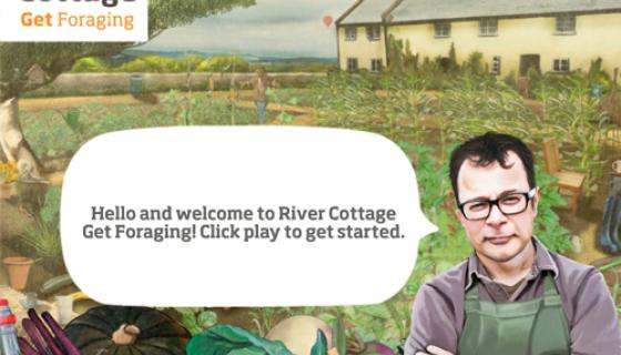 River Cottage Foraging Game